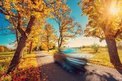 Car on asphalt road in autumn Stock Photo