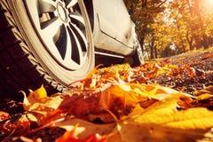 Car on asphalt road in autumn Royalty Free Stock Photos