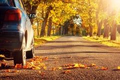 Car on asphalt road in autumn Stock Photography
