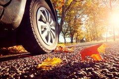 Car on asphalt road in autumn Stock Image
