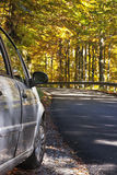 Car an autumnal road Stock Images