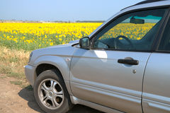 Car on the background fields Royalty Free Stock Image