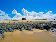 A car on the beach. A car with the hood open on the beach in Mozambique Stock Photography
