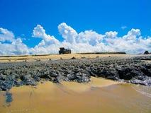 A car on the beach Stock Photography