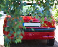 Car behind tree leaves Royalty Free Stock Photo
