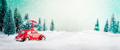 Car Carrying Christmas Tree royalty free stock image