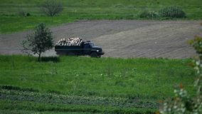 The car is carrying firewood near field.  stock video footage