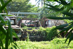 Car Cemetery. The cemetery was abandoned scrap cars Royalty Free Stock Image