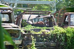 Car Cemetery. The cemetery was abandoned scrap cars Royalty Free Stock Photo