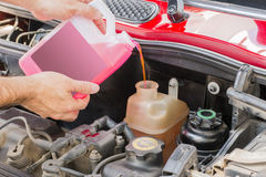 Car coolant. Service in engine Royalty Free Stock Image