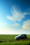 Car in corn field Stock Images