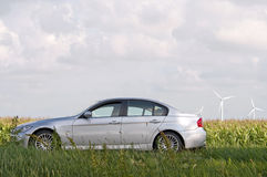 Car and corn, Holland Royalty Free Stock Image