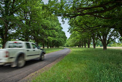 Car on country road Royalty Free Stock Image