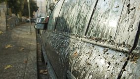 Car Covered in Bird Droppings stock images