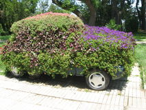 Car covered with green and flowers Royalty Free Stock Photos