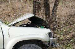 Car crash tree Stock Image