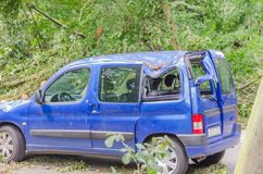 Car damage caused by storm. Essen,  Nrw, Germany - June 13, 2014: Essen Stadtwald, according to it was the strongest storm in NRW since Kyrill in 2007 Royalty Free Stock Image