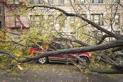 Car damaged by Hurricane Sandy. Aftermath of Hurricane Sandy, New York City Royalty Free Stock Image