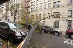 Car damaged by Hurricane Sandy. Aftermath of Hurricane Sandy, New York City Royalty Free Stock Photography