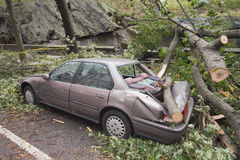 Car damaged by Hurricane Sandy. Parked car along Central Park West, Upper West Side, Manhattan, damaged by tree during Hurricane Sandy Royalty Free Stock Images