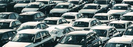 New cars royalty free stock photo