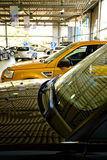 Car dealership showroom. Brand-new shiny cars in car dealership showroom royalty free stock photo