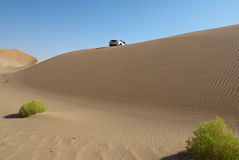 A car in the desert. With green bushes Royalty Free Stock Images