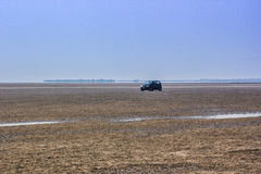 A car in desert Stock Image
