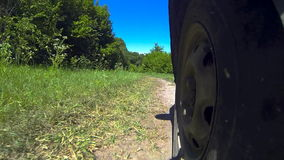 Car drive in forest. stock footage