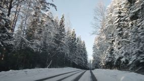 Car driving along the forest road in winter. Driving POV on snowy country road. Snow covered road.  stock video footage