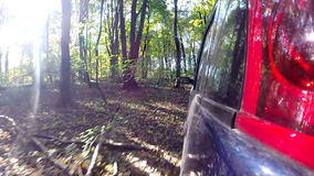 Car driving through the countryside in deep forest. The camera is left outside. Beautiful reflection on the car body stock video