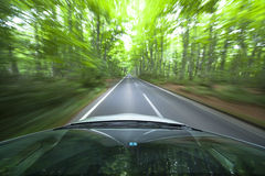 Car driving fast into forest. Stock Photos
