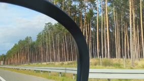 Car driving at high speed, view of roadside landscape from passenger seat. Stock footage stock video