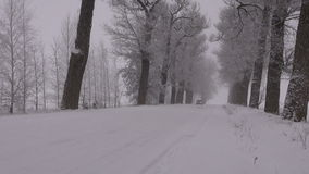 Car driving on snowy old rural road with tree alley and morning fog. Mist stock video