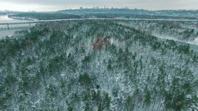 Car driving through snowy pine forest in winter aerial drone footage. 4K stock video footage