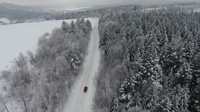 Car driving through snowy pine forest in winter stock footage