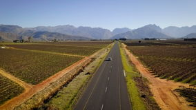 Car driving through a vineyard landscape, aerial. Aerial of car driving through vineyards stock video footage