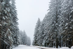Car driving on winter road Stock Photos