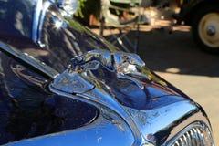 Car emblem. Unique classic car chrome emblem Stock Images