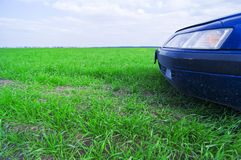 Car in field Stock Photos