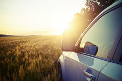 Car in the field on background of magnificent sunset Stock Image