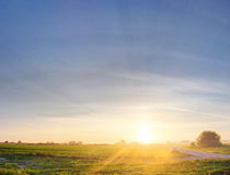 Car in field on sunset Royalty Free Stock Photography