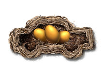 Car Financing Concept. As a nest shaped as an automobile or auto with golden eggs inside as a financial symbol for transportation investment or leasing payments Stock Photo