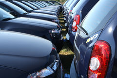 Car fleet row. Row of identical cars , hood and backside view Royalty Free Stock Images