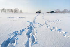 Car and footsteps on the snowy field Royalty Free Stock Photo