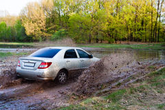 Car forces water. Sedan on nature stock photo