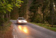 Car in forest Royalty Free Stock Image