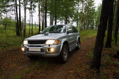 Car in forest Stock Photos