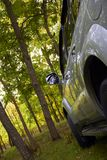 Car in forest Royalty Free Stock Photos