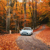 Car on a forest path Stock Photo